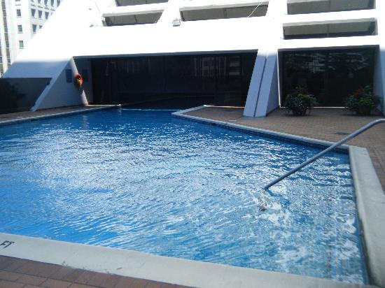Hilton Toronto: La piscine intérieur/extérieur