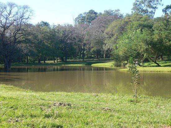 Asuncion, Paraguay: parque tematico Japones dentro del jardinBotanico
