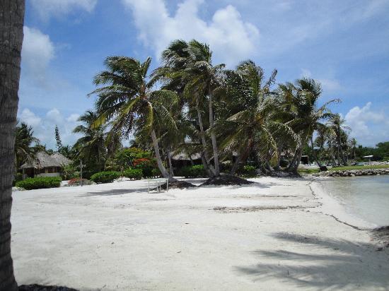 Costa de Cocos: Paradise Found
