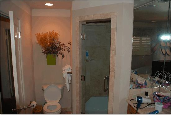 Carmel Country Inn: Expansive bathroom