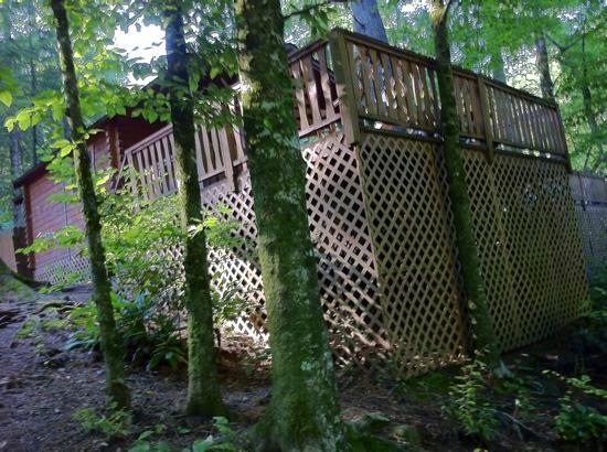 Yogi in the Smokies: ranger riverside cabin from river bank