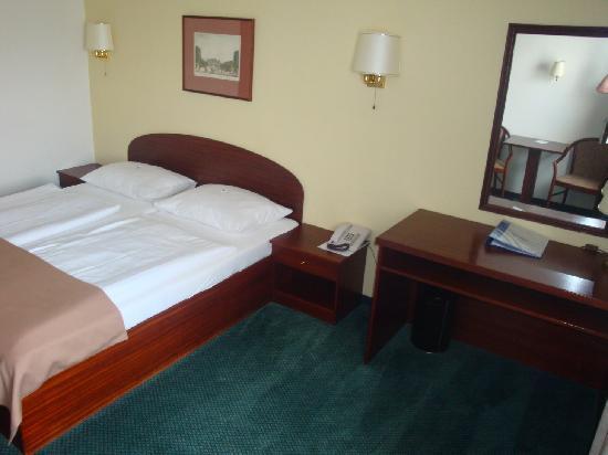 Alexander Hotel: Chambre