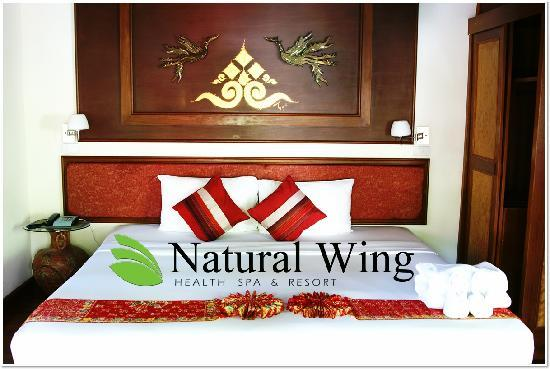 Natural Wing Health Spa & Resort: Double Villa