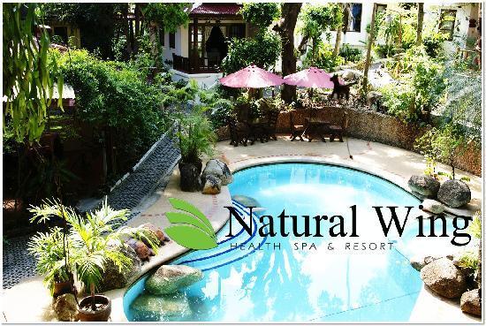 Natural Wing Health Spa & Resort: Pool