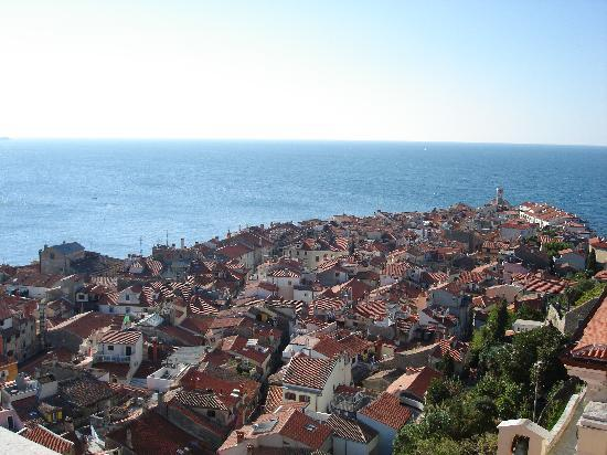 Max Piran: View of peninsula from bell tower