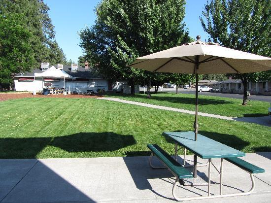 Shasta Pines Motel: Outdoor Picnic Area
