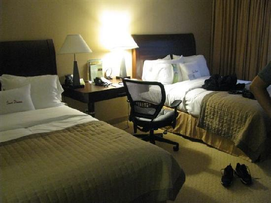 Doubletree by Hilton Hotel Tarrytown : Room