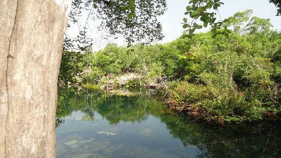 Grand Palladium Kantenah Resort and Spa: Eden Cenote