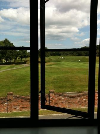 Woodbury Park Hotel & Golf Club: view from room