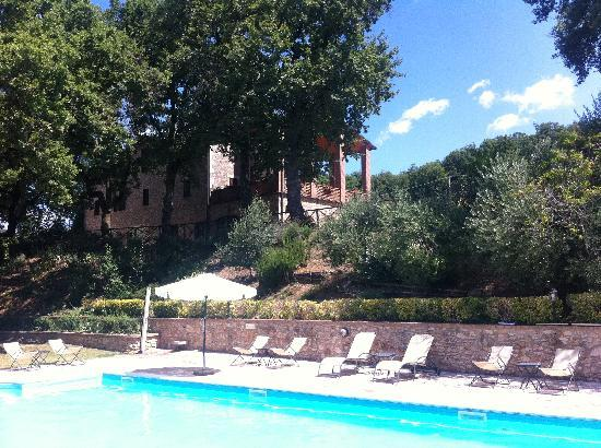 Villa Selva Country House : view from the pool