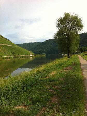 Anker Hotel Gasthaus: View of the Mosel just outside the hotel