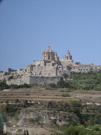 The Waterfront Hotel : View of Mdina - worth a visit
