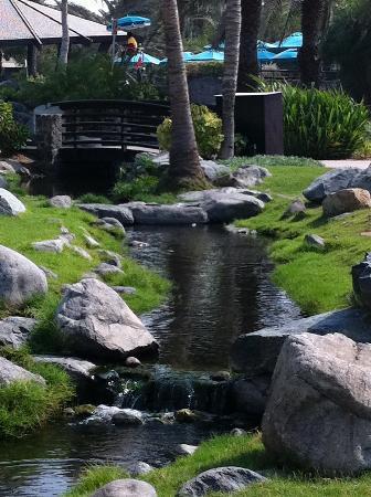 JA Jebel Ali Beach Hotel : Garden