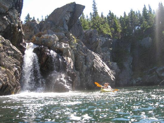 Stan Cook Sea Kayak Adventures Day Tours
