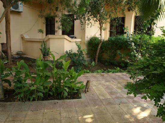 El Nakhil Hotel & Restaurant: garden
