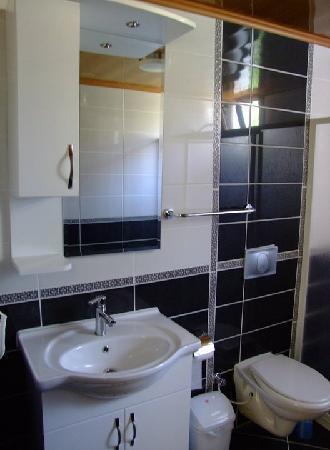 Gokcen Hotel & Apartments: Bathroom In Room!