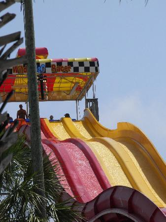 Wild Water & Wheels: Water Slide