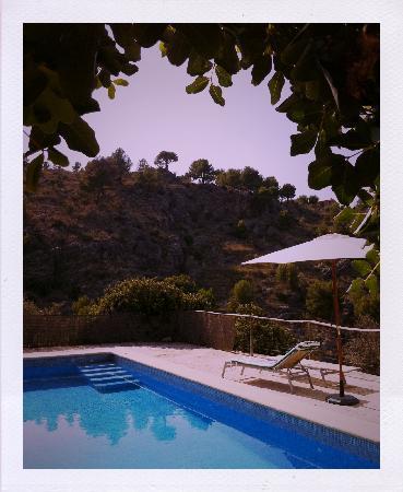 Finca agroturismo Muleta de ca s'Hereu: Der Pool inmitten der Berge