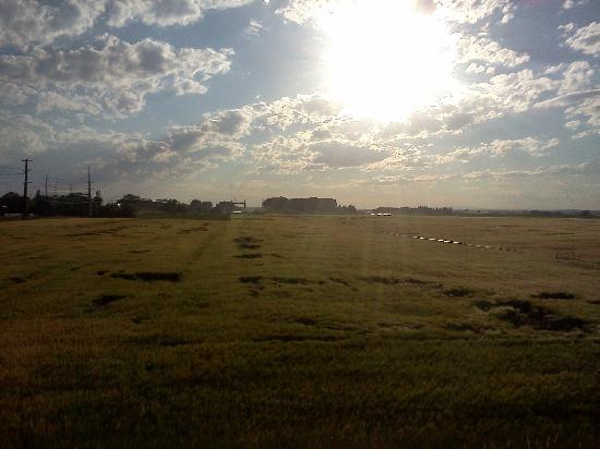 Sleep Inn & Suites: View of nice farmland outside my window.