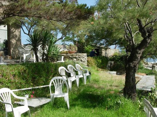 Ersa, Francia: giardinetto prospiciente l'hotel La Giraglia