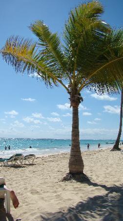 Hotel Riu Palace Punta Cana: the beach