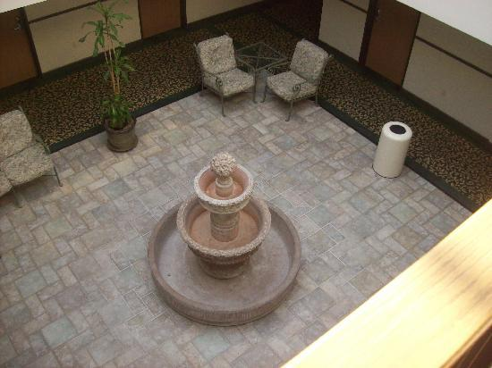 Comfort Inn & Suites San Francisco Airport WEST: Atrium Just Needs Water and Plants