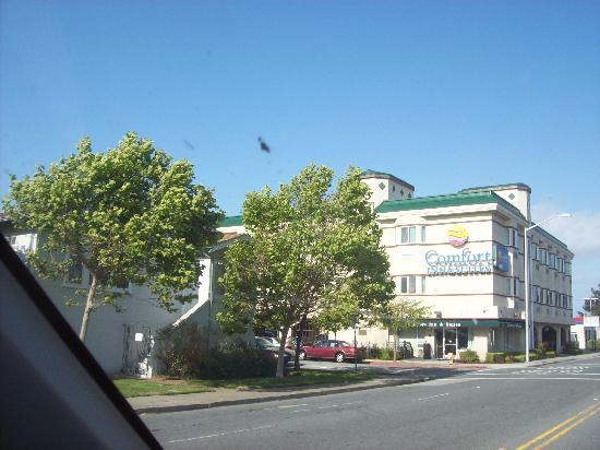 Comfort Inn & Suites San Francisco Airport WEST: Comfort Inn from the road