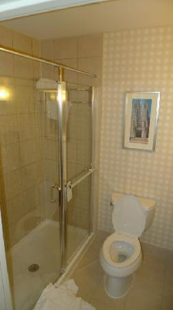 Hilton Garden Inn Blacksburg : Nice shower