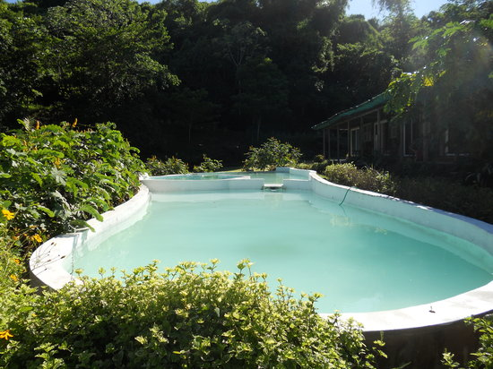 Culloden Bay, Tobago: pvt pool in front garden rooms
