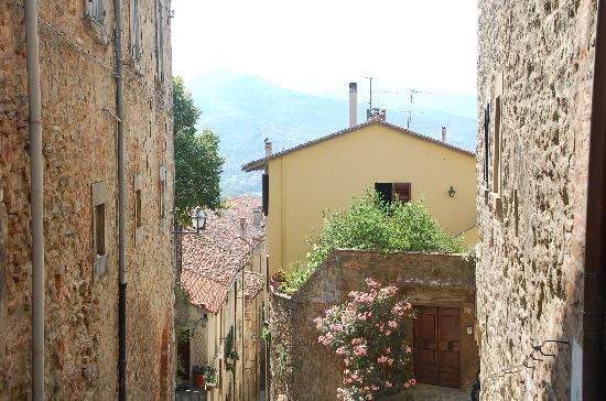 Bed & Breakfast Viziottavo: A view just a few steps from Sette Vizi, on the way to Piazza Municipale