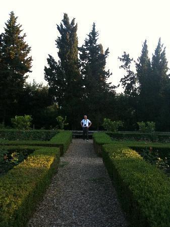 Villa Baldasseroni: Back Garden
