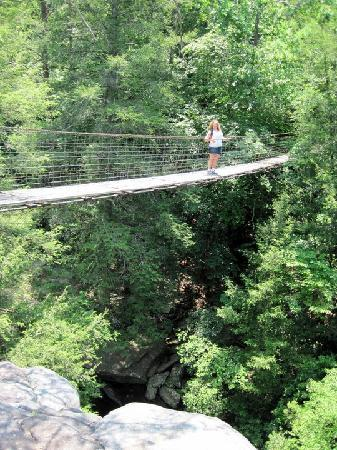 The Inn at Fall Creek Falls State Park: Hanging Bridges