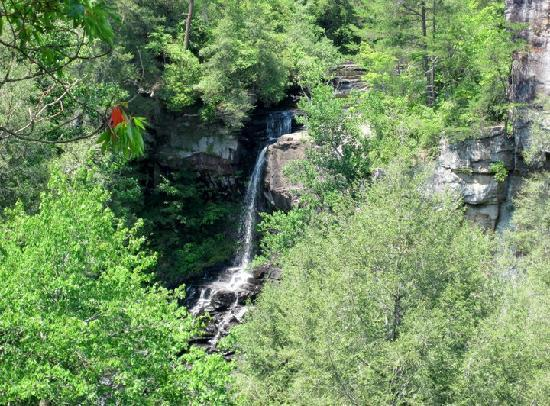 The Inn at Fall Creek Falls State Park: Piney Creek Falls