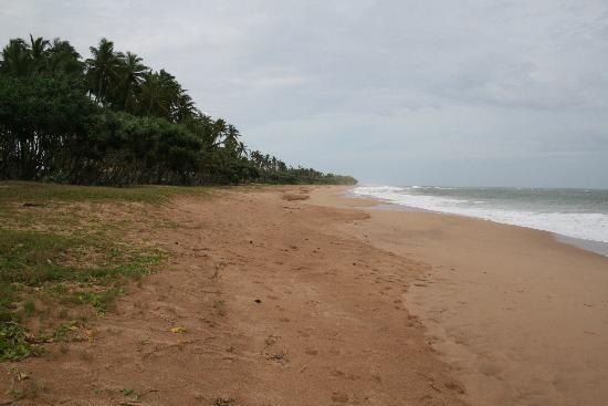 Turtle Beach Cabanas: Strand