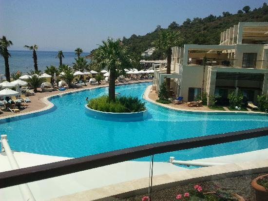 Paloma Pasha Resort : big swiming pool