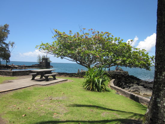 Coconut Island: great space for a picnic