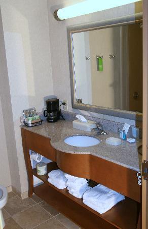Hampton Inn Birmingham I-65/Lakeshore Drive: Guest Bathroom