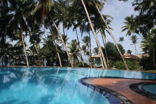 Palace Mirissa: Pool
