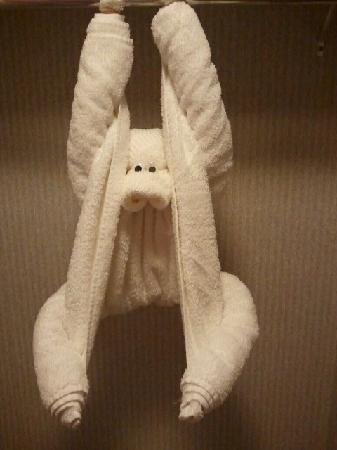 RiverGate Mountain Lodge: We found a monkey hanging out in our room!!!