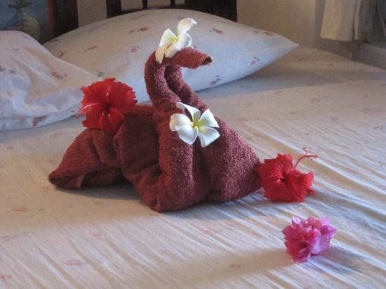 Paradise Beach Bungalows : flowers on your bed every day by the housekeeper - not just on arrival
