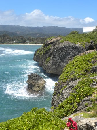 Discover Hawaii Tours: Coast line