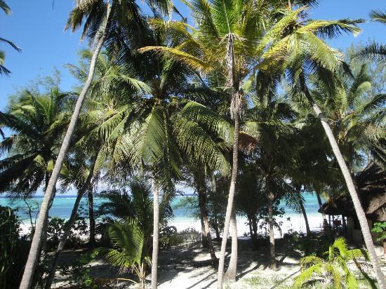 Panga Chumvi Resort: view from the veranda