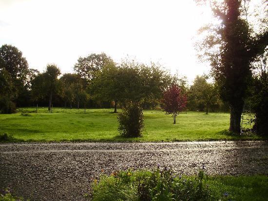 La Ferme Saint Nicolas: le parc