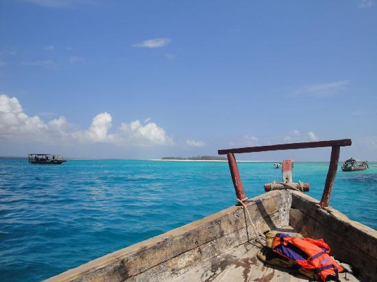 Panga Chumvi Beach Resort: Snorkelling off Mnemba Atoll