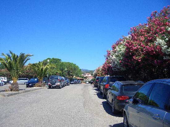 Club Hotel Torre Moresca: the road around the hotel