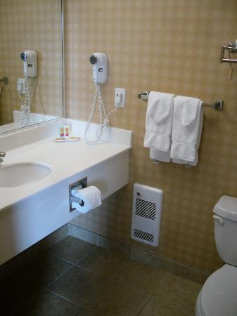 Econo Lodge Inn & Suites University : Bathroom