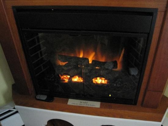 Piney Hill Bed & Breakfast: Fireplace in Room