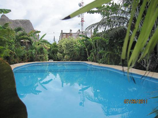 Hotel Casa Barbara: pool