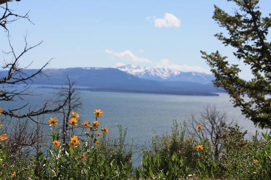 Dunraven Lodge: This is Lake Yellowstone