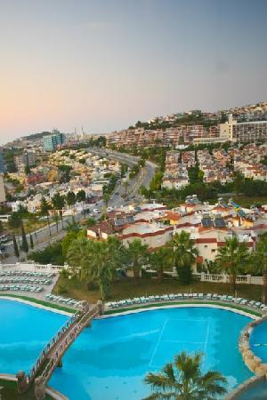 Palmin Hotel: pool view
